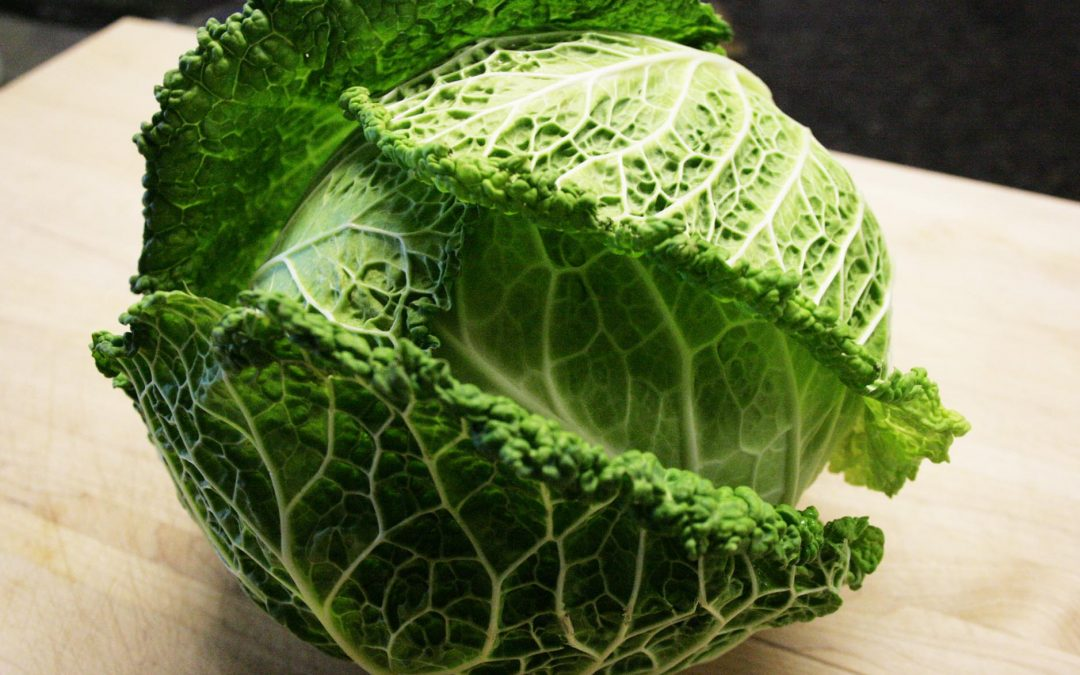 Cabbage…I get on a Kick!
