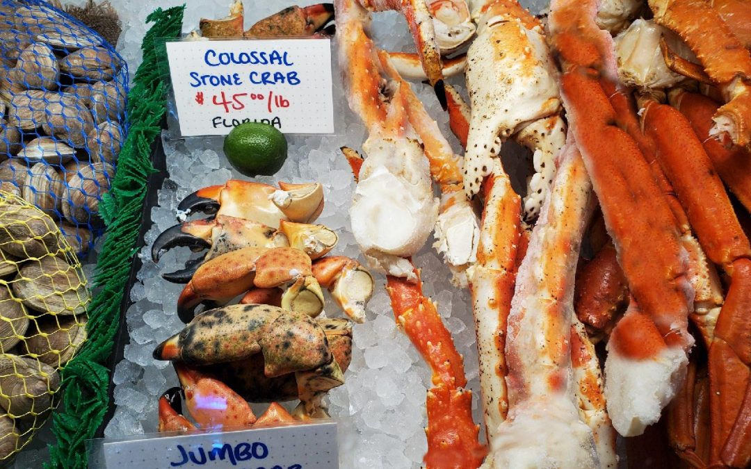 New England and All Things Seafood…